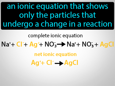 Net Ionic Equation Definition Flashcard