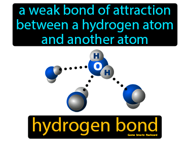 Hydrogen Bond Science Definition