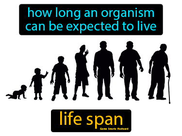 Life Span Science Definition