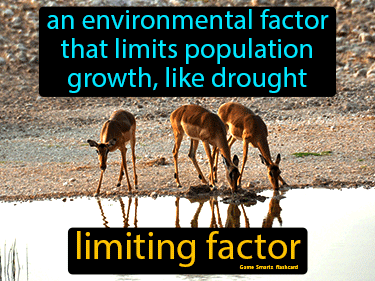 Limiting Factor Science Definition