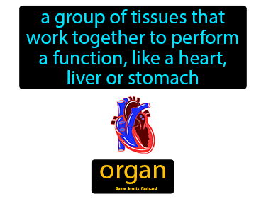 Organ Science Definition