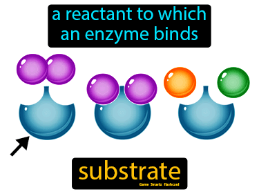 Substrate Science Definition