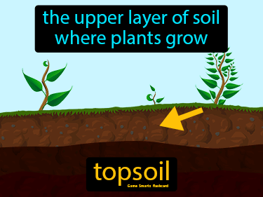 Topsoil Science Definition
