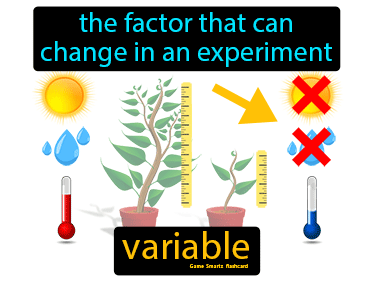 Variable Science Definition