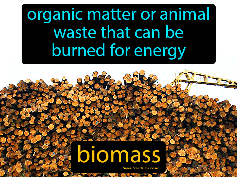 Biomass Definition: Organic matter or animal waste that can be burned for energy. Science.