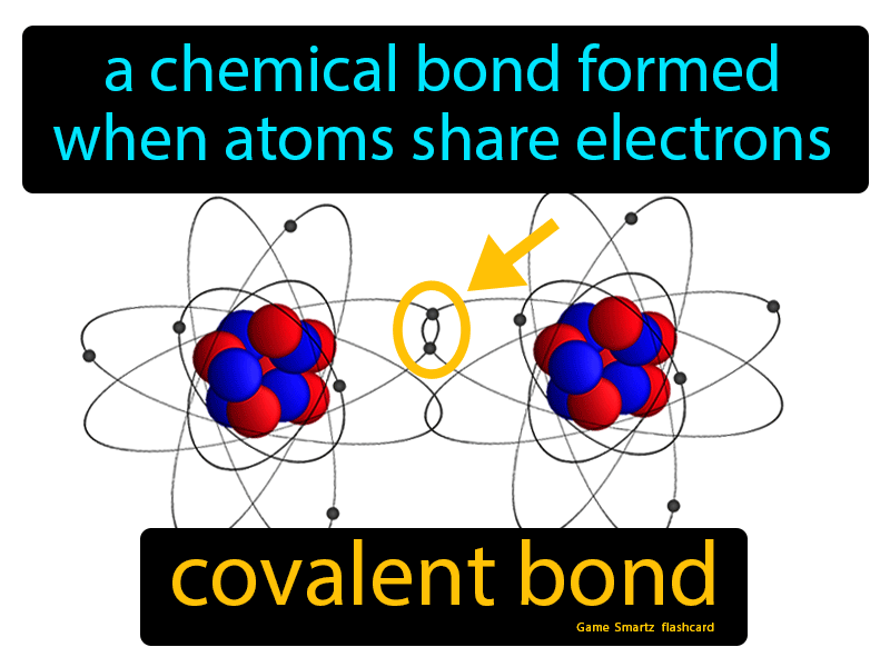 Covalent Bond Definition: A chemical bond formed when atoms share electrons. Physical Science