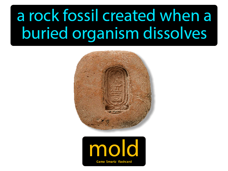 Mold Definition: A rock fossil created when a buried organism dissolves. Science.