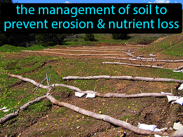 Soil Conservation Definition Flashcard