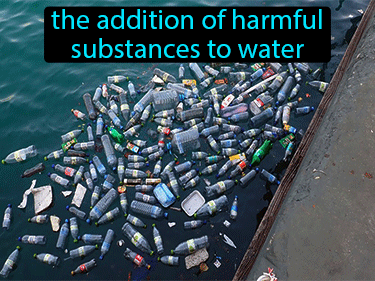 Water Pollution Definition Flashcard
