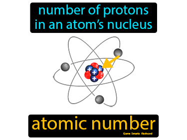 Atomic Number Definition Flashcard