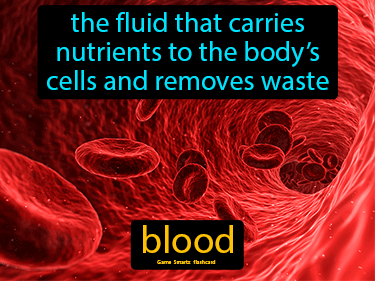 Blood Science Definition