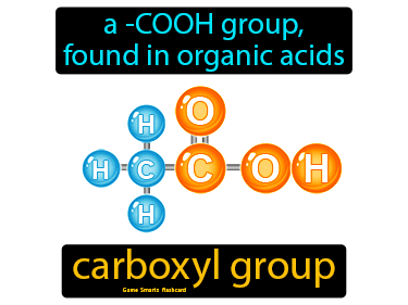 Carboxyl Group Definition Flashcard
