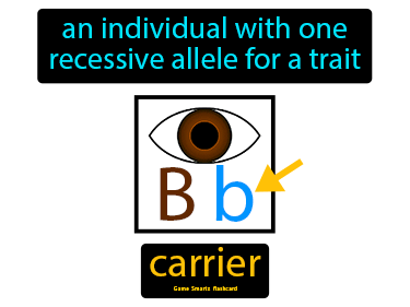 Carrier Definition Flashcard