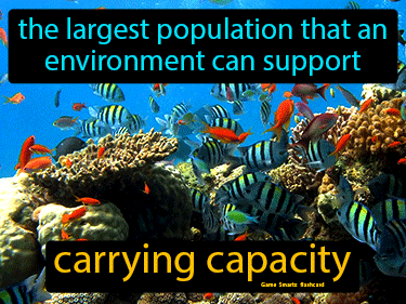 Carrying Capacity Definition Flashcard