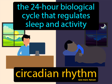 Circadian Rhythm Science Definition