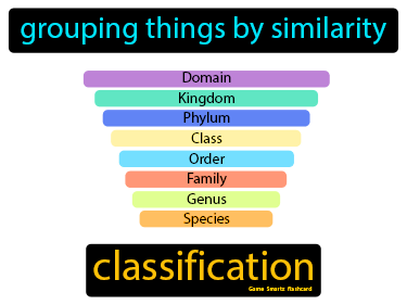 Classification Science Definition