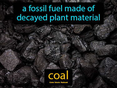 Coal Science Definition