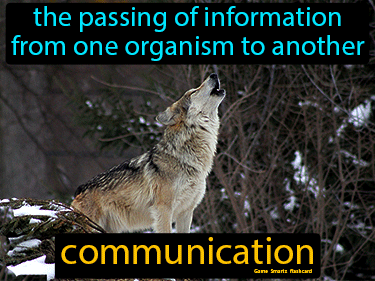 Communication Science Definition