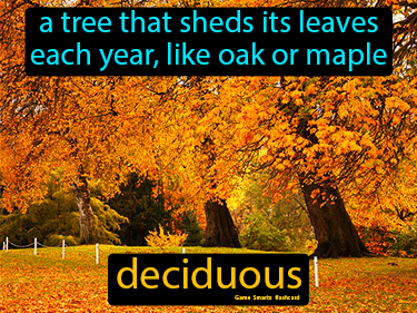 Deciduous Science Definition