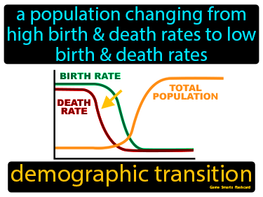 Demographic Transition Definition Flashcard