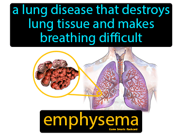 Emphysema Science Definition