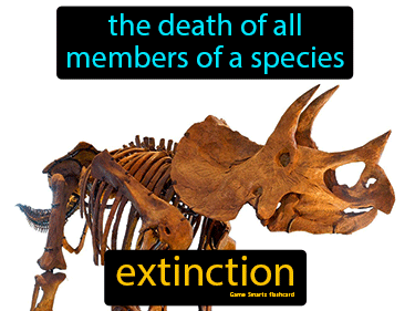 Extinction Definition Flashcard