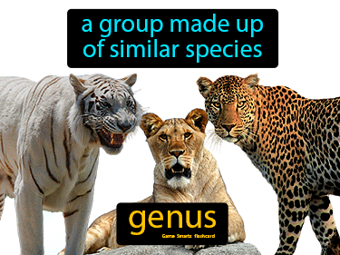 Genus Science Definition