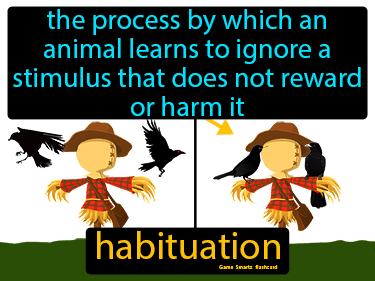 Habituation Science Definition