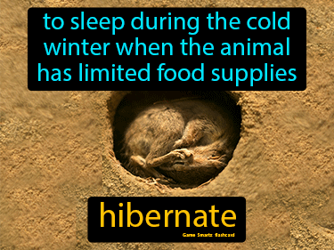 Hibernate Definition Flashcard
