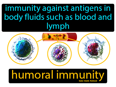 Humoral Immunity Definition Flashcard