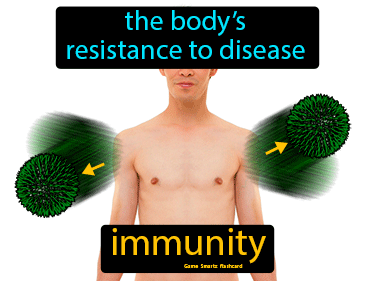 Immunity Definition Flashcard