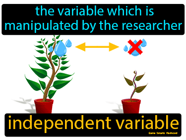 Independent Variable Definition Flashcard