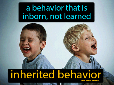 Inherited Behavior Definition Flashcard
