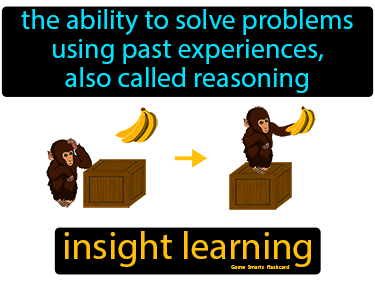 Insight Learning Science Definition
