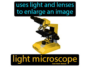 Light Microscope Science Definition