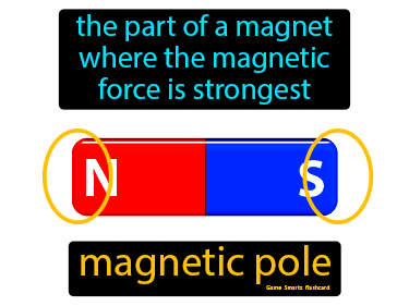 Magnetic Pole Definition Flashcard