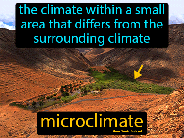 Microclimate Science Definition