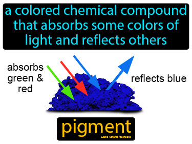 Pigment Definition Flashcard