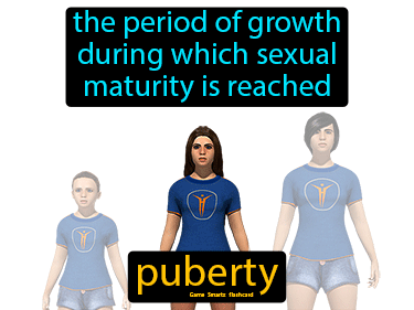 Puberty Science Definition