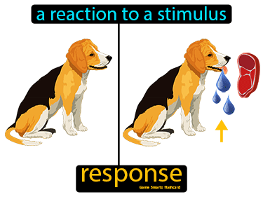 Response Science Definition