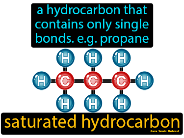 Saturated Hydrocarbon Definition Flashcard