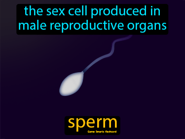 Sperm Science Definition