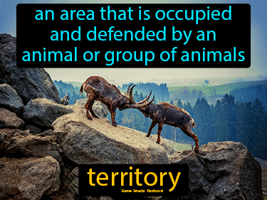 Territory Science Definition