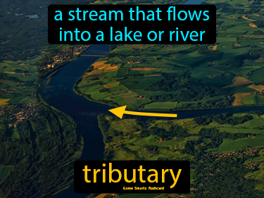 Tributary Definition Flashcard