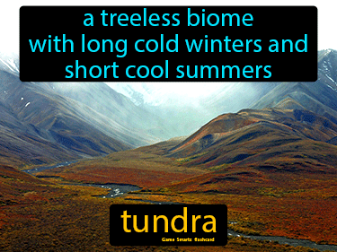 Tundra Science Definition