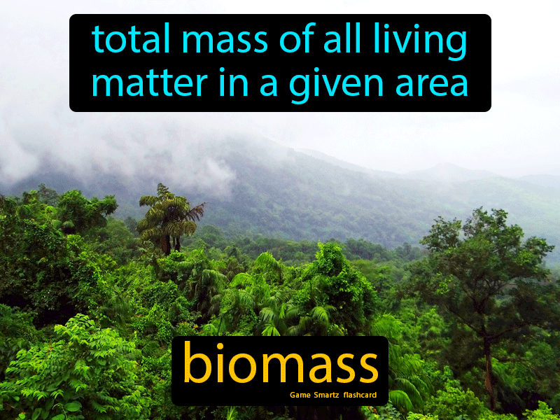 Biomass Definition: Total mass of all living matter in a given area. Biology