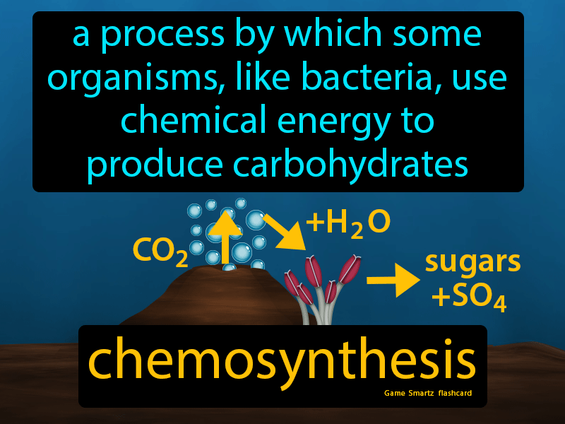 Chemosynthesis Definition: A process by which some organisms, like bacteria, use chemical energy to produce carbohydrates. Biology