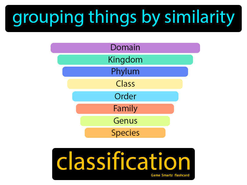 Classification: Grouping things by similarity.