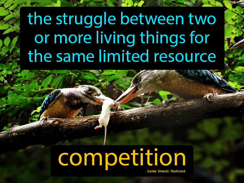 Competition - Definition (Image) - Game Smartz Science