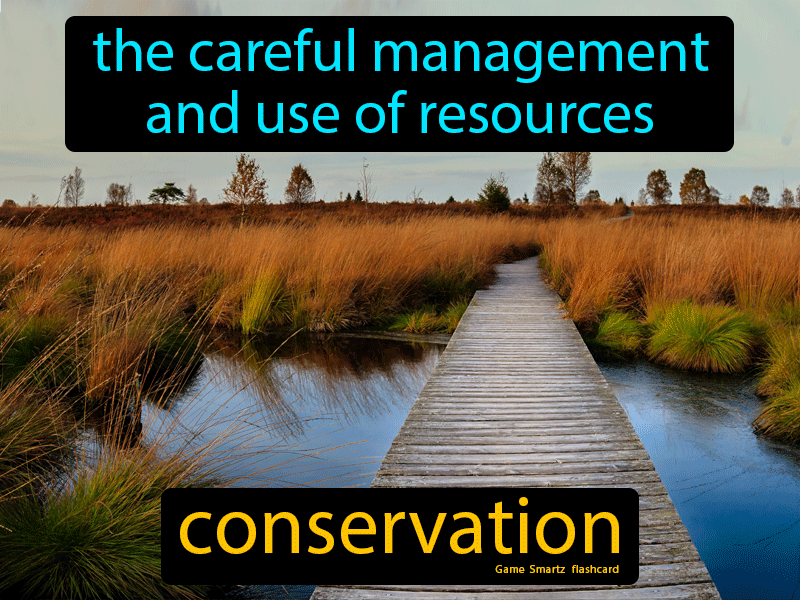 Conservation Definition: The careful management and use of resources.